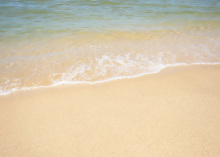 $SAIのブログ-夏期休暇のお知らせ