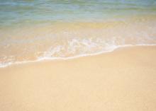 SAIのブログ-夏期休暇のお知らせ