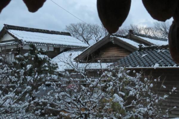 20141206_snow2.jpg