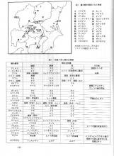 仮面ライダー響鬼3