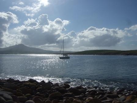 loon  at santa barbara bay