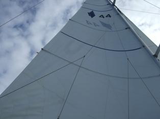 sails up2