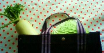 20120109買い物バッグ