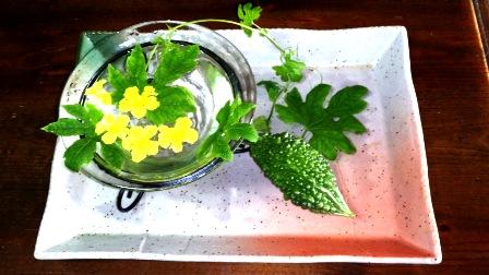 ゴーやの花と実