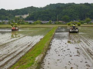 20120601田中農場さん田植え