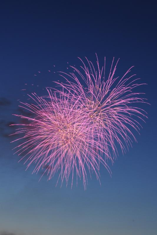 新居浜市  にいはま納涼花火大会 打ち上げ花火