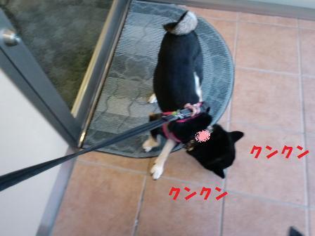 blog6248.jpg