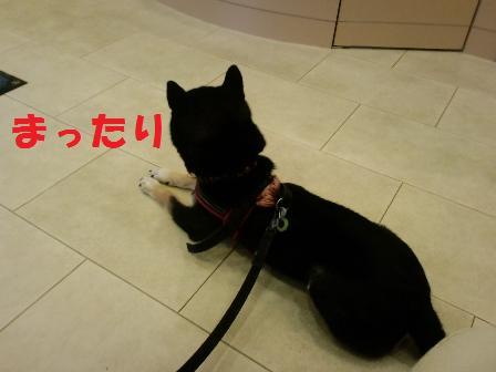 blog6250.jpg