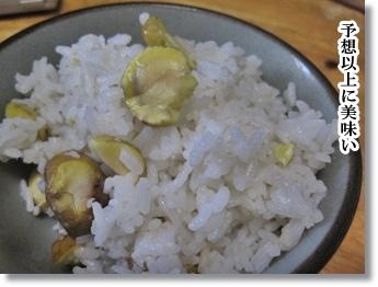 栗ご飯と反省の日々1
