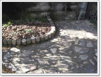 庭をゴソゴソ1