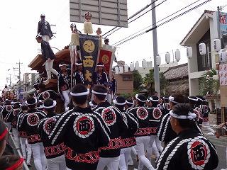 岸和田だんじり祭り002