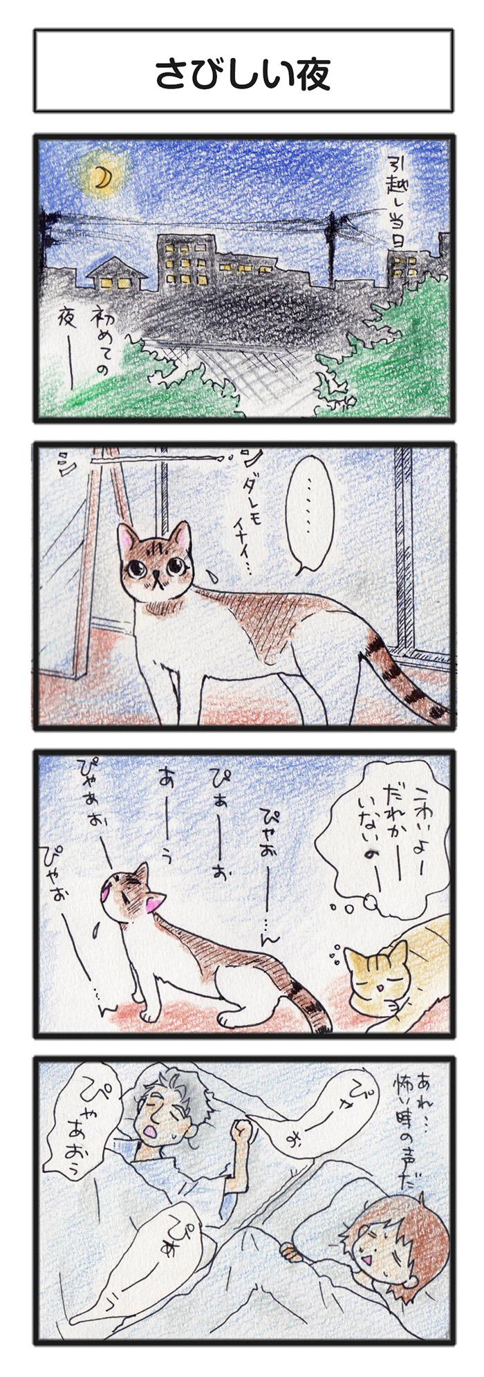comic_4c_14101102.jpg
