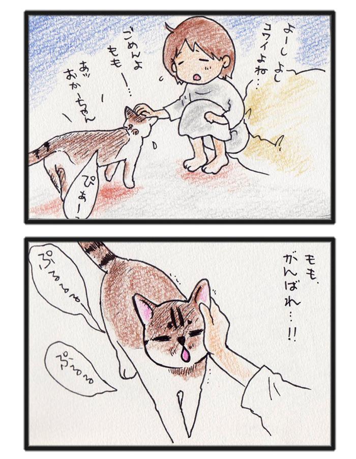 comic_4c_14101103.jpg