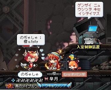 Maple110731_200701.jpg