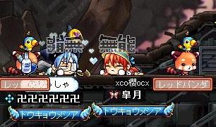 Maple110802_223738.jpg