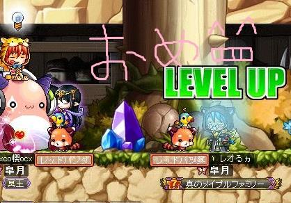 Maple110909_215801.jpg