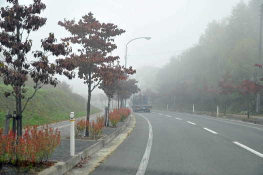 2008-1019-霧の朝