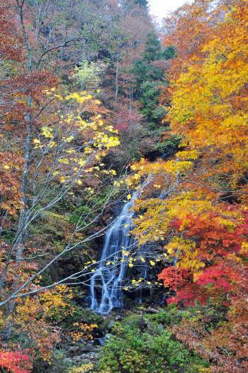 2008-1023-吾妻の不動滝1