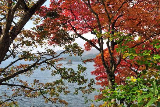2008-1025-湖畔