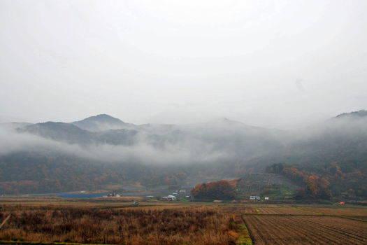 2008-1116-晩秋1