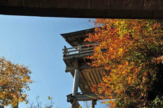 2008-1118-山寺2