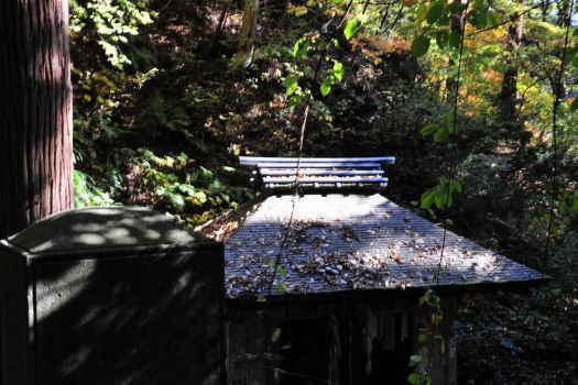 2008-1119-山寺4
