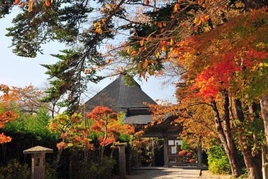 2008-1119-山寺8