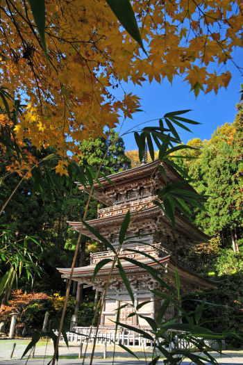2008-1120-慈恩寺3