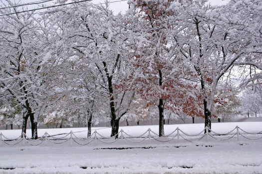 2008-1121-雪の公園