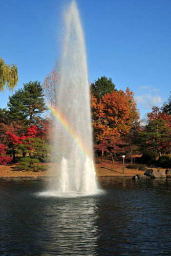 2008-1123-公園4