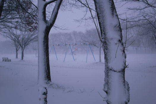 2008-1227-吹雪1