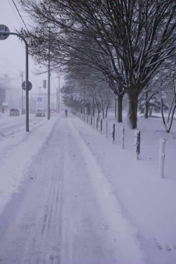 2008-1227-吹雪2