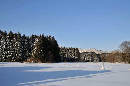 2009-0123-雪景色1
