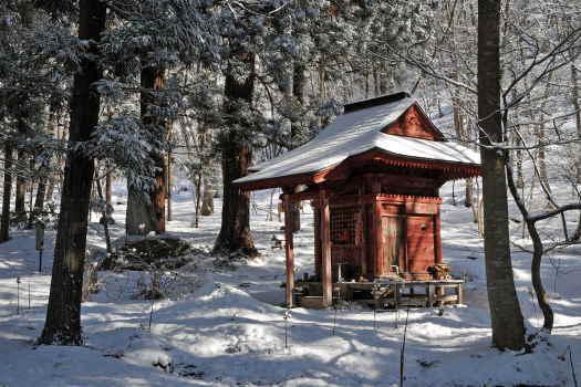 2009-0129-雪景色1