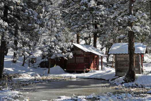 2009-0129-雪景色2
