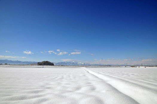 2009-0130-雪原