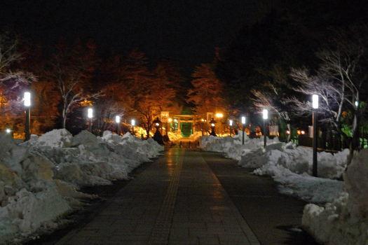 2009-0208-夜の神社