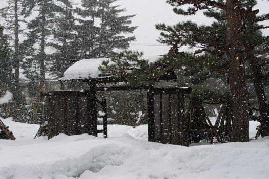 2009-0210-雪の庭園