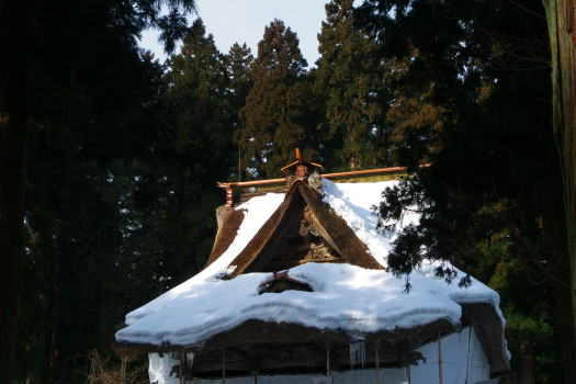 2009-0213-紫陽花寺
