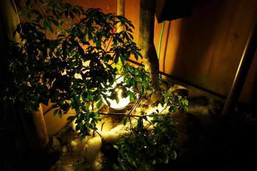 2009-0228-灯り