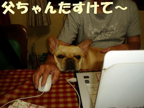 001_convert_20110521013449.jpg