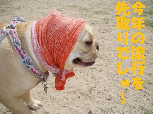 001_convert_20110523141321.jpg