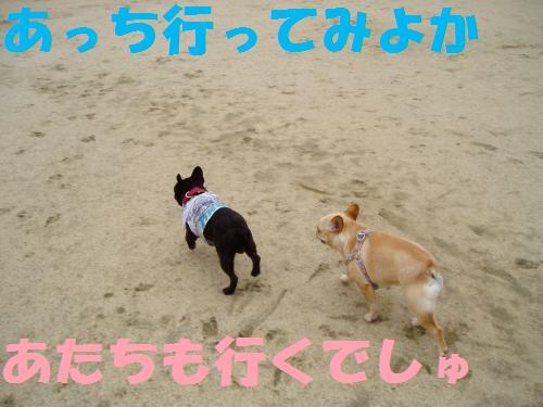 001_convert_20110526135418.jpg