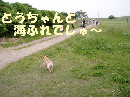 001_convert_20110606133226.jpg