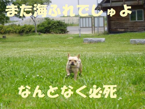 001_convert_20110615233827.jpg