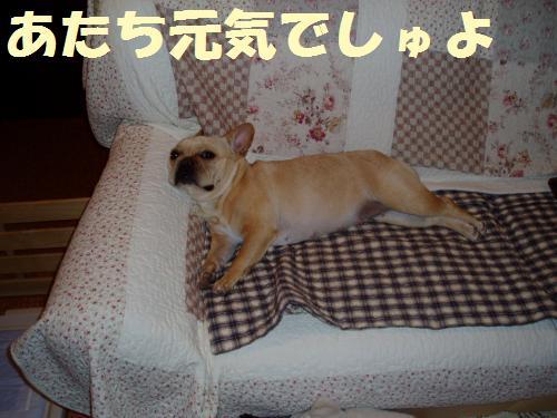 001_convert_20110624001648.jpg