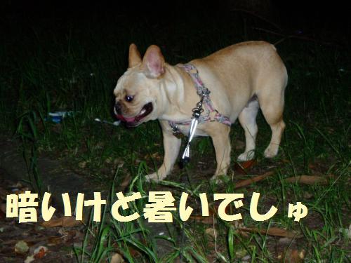 001_convert_20110702005755.jpg