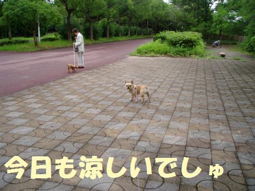 001_convert_20110725021040.jpg