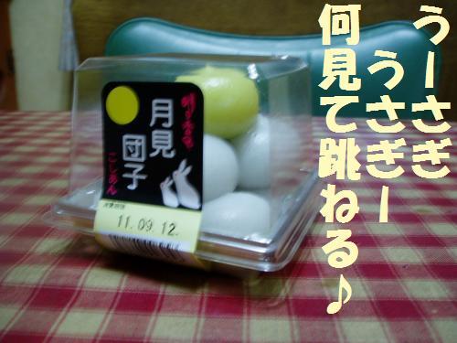 001_convert_20110912230926.jpg