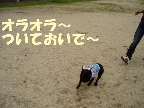 003_convert_20110526135610.jpg